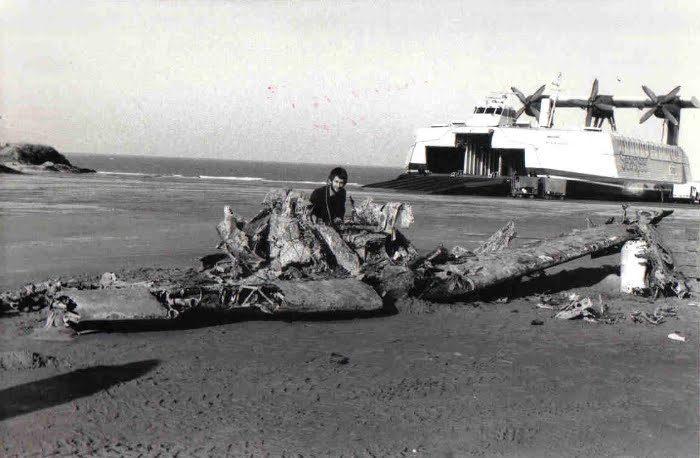 Un Spitfire découvert sur la plage de Calais